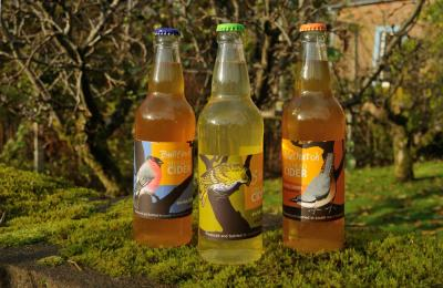 Labels for Steilhead Cider