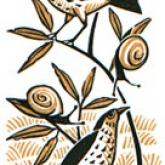 Thrushes and Snails